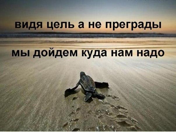 Мотивационные картинки и фото с цитатами
