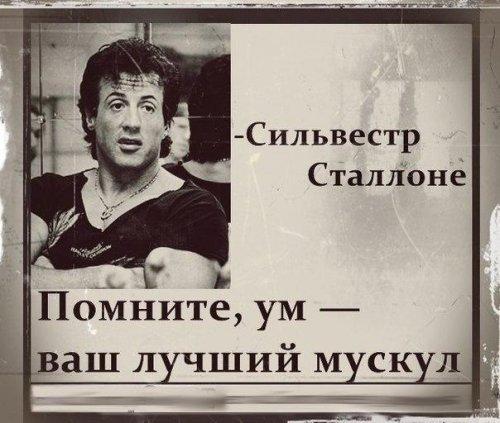 Фразы, цитаты, высказывания знаменитых спортсменов